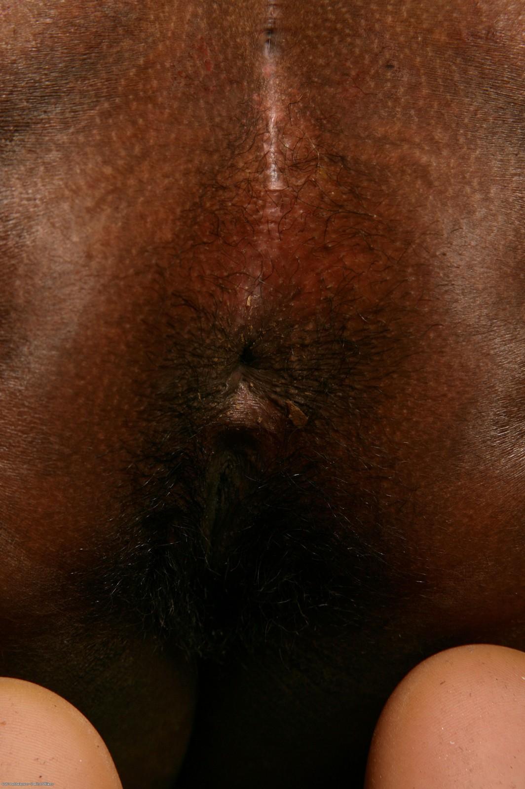 Развратные волосатые женщины 28 фотография