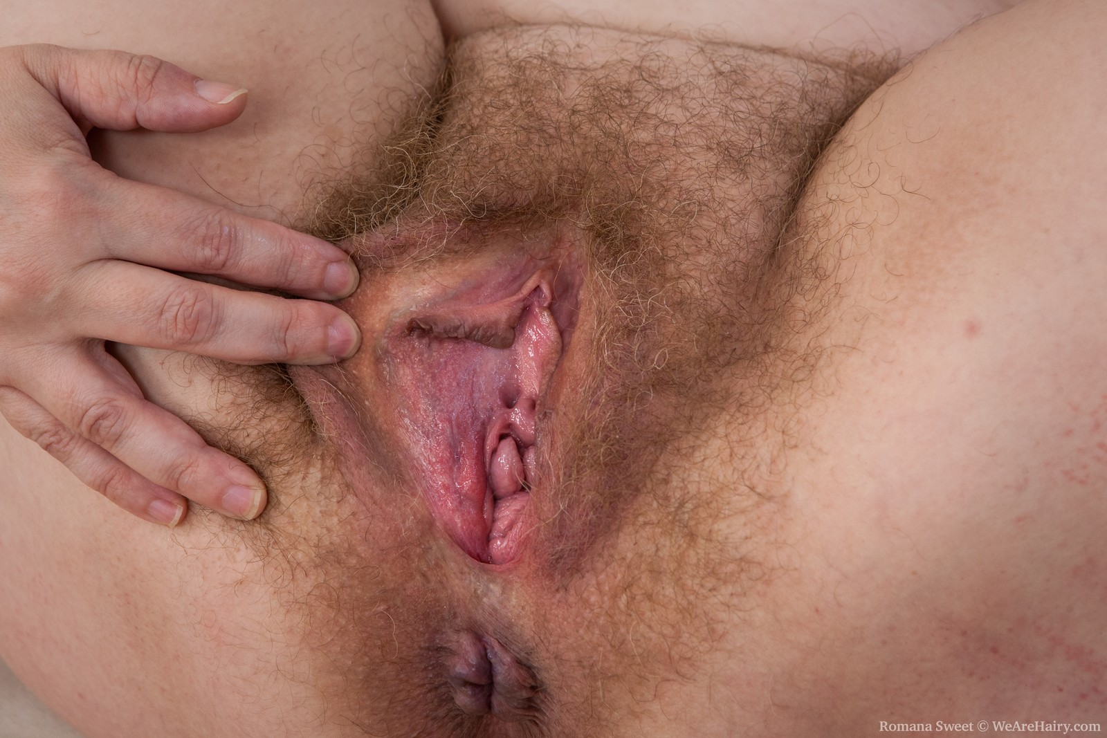 Sweet Pictures Hairy 6